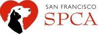 SF SPCA