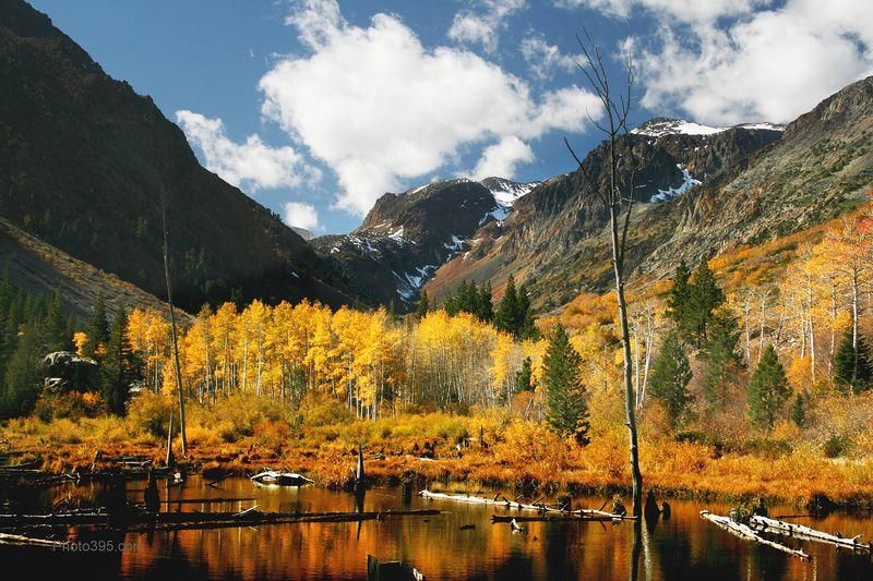 Fall Foliage - Lundy Canyon